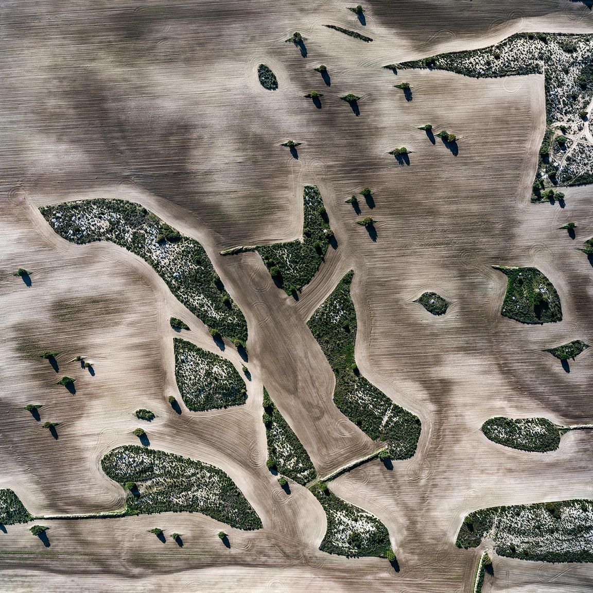 Val de San JorgeSziklás dombokon álló fák alkotnak mikro-szigeteket a frissen megművelt mezőgazdasági területen Pina de Ebro térségben, Bujaraloz közelében.                         Zaragoza, Spanyolország. 2018.12.29.A képen látható terület szélessége: 521 m.