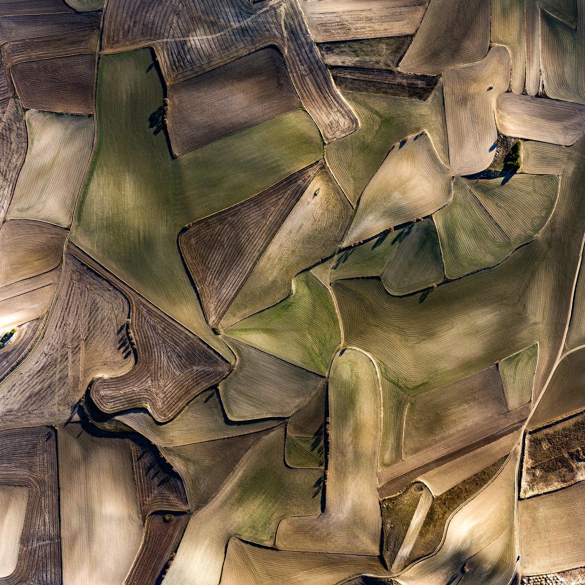 EsquiviasApróra darabolt parcellák segítségével próbálják kiegyenlíteni a lankás terepet a ritkán előforduló csapadék megtartása érdekében. A föld szürkés színét a talajban található bórax okozza.Esquivias, Toledo, Spanyolország. 2018.12.31.A képen látható terület szélessége: 793 m.