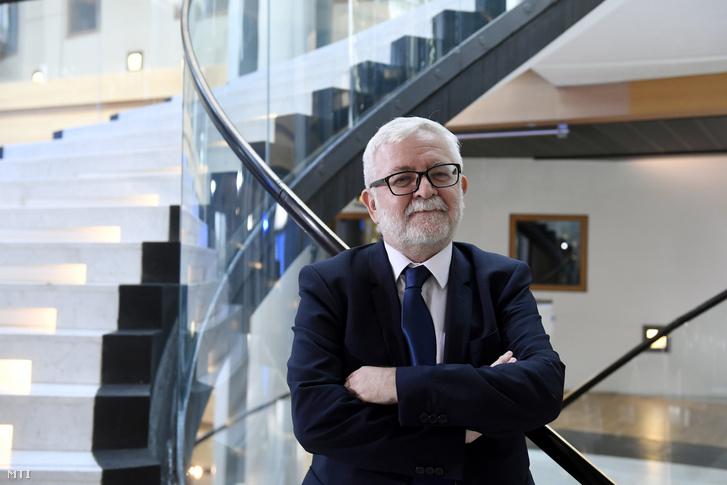 Ara-Kovács Attila a Demokratikus Koalíció (DK) képviselõje az Európai Parlament strasbourgi épületében 2019. július 16-án.