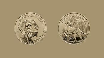 Vizslás érmét bocsát ki az MNB