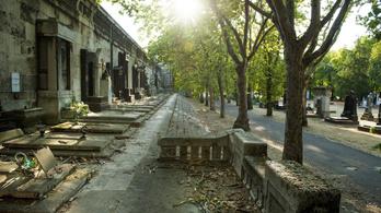 Futóútvonalakat jelölnek ki a Fiumei úti sírkertben
