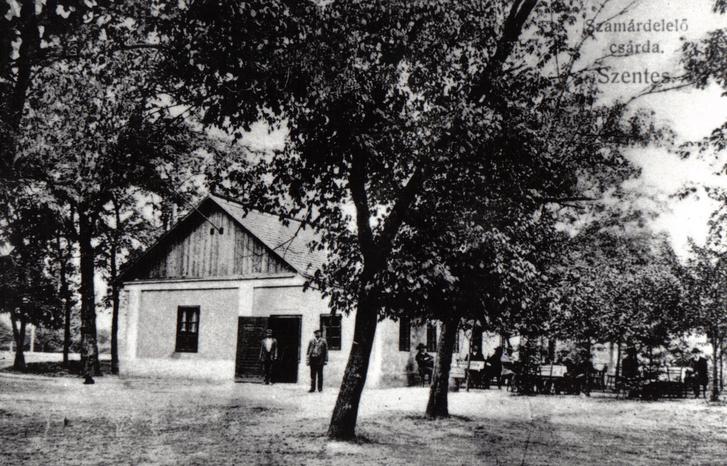 Szentesi képeslapon a Szamárdelelő csárda valamikor a XIX. század végén