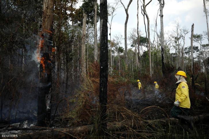 IBAMA tűzoltók próbálják kontrollálni a tűzfészkeket Apuinál, Brazíliában 2019. szeptember 3-án
