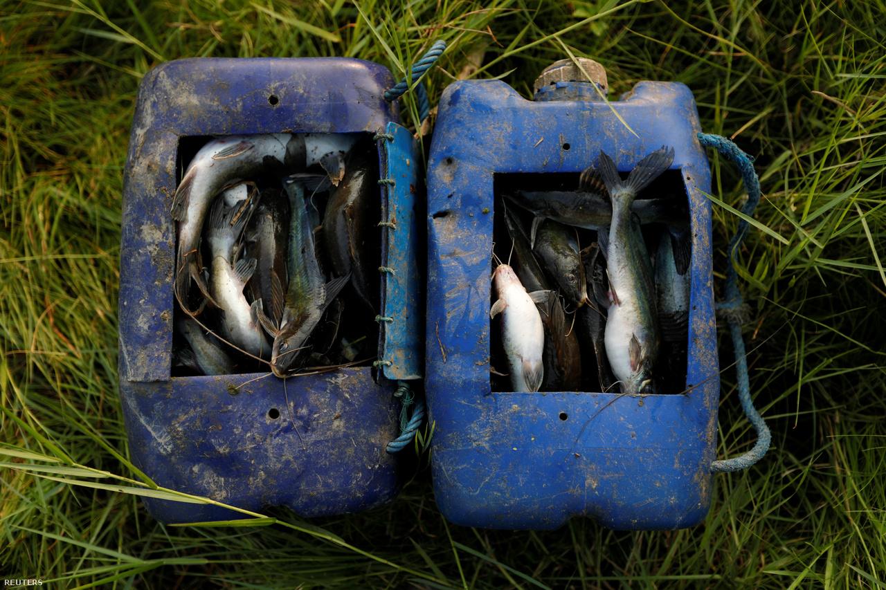 A hulladéknak néha egyéb hétköznapi felhasználásai is vannak a nyugati szemétnek, például bele lehet rakni a közeli folyóban fogott halakat.