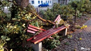 Reggelre elhárították a viharkárokat Szegeden