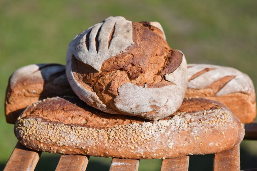 A tönkölykenyér sokak számára jelent alternatívát. Érdemes odafigyelni, hogy legalább 60%-ban tönkölylisztet kell tartalmaznia kenyérnek, amiből 2 szelet kenyér 200-250 kalóriát tartalmaz. Magas rosttartalma segíti az emésztést, ugyanakkor képes gátolni a koleszterin felszívódását a véráramba.