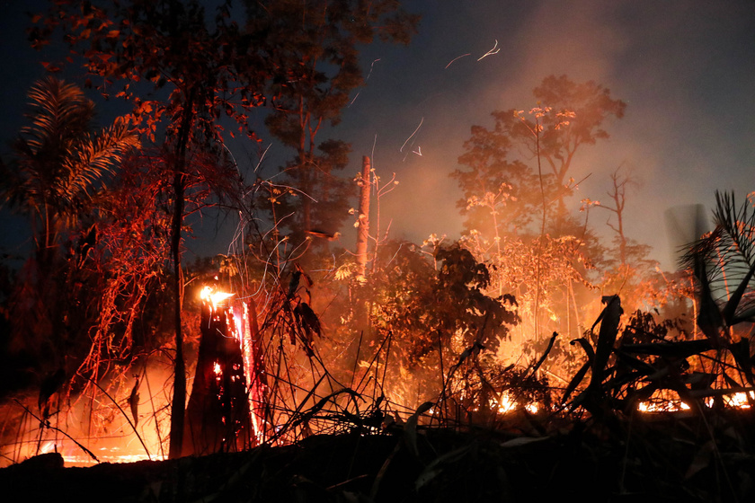 Újra és újra kigyullad az amazonasi esőerdő: hiába oltják, egyre több a tűz