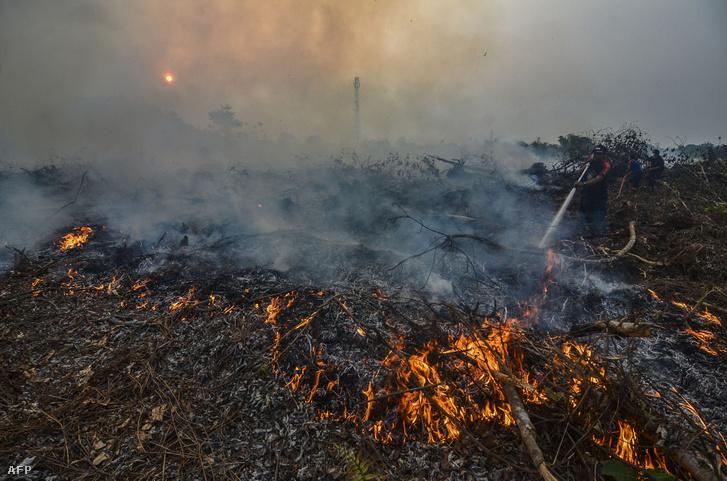 Erdőtűz Indonéziában 2019 szeptember 9-én