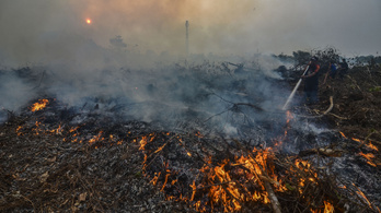 Az indonéziai erdőtüzek füstje komoly légszennyezettséget okoz Malajziában