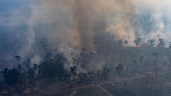 Az űrből is látszik az Amazonas tüzeinek brutális légszennyezése