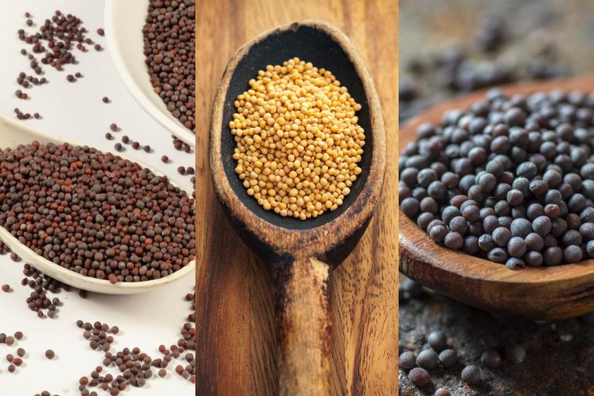 Anyagcsere-gyorsító mustármag: hogy fogyaszd, hogy segítsen a diétában?