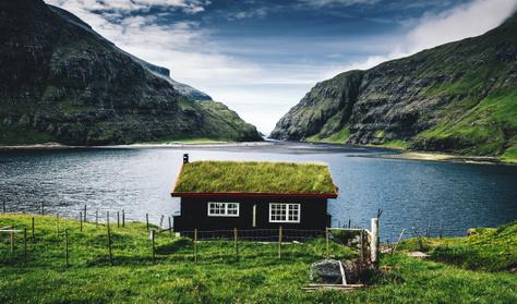 Egy béka a fjordban