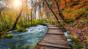 Lélegzetelállító őszi tájak a világ körül
