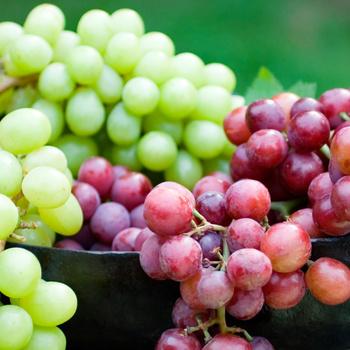 6 ok, hogy miért egyél sok szőlőt - Amúgy is itt a szezonja