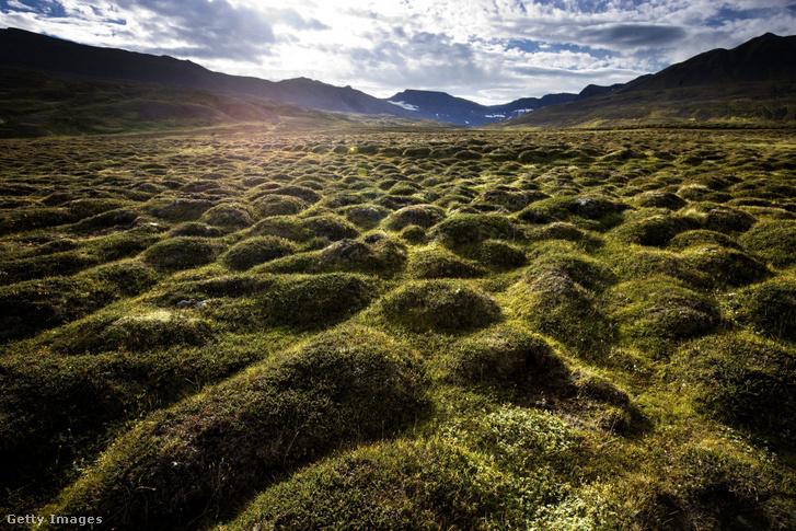 Izlandi tájkép Westfjords-nál, közel Stadarskalihoz