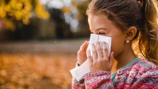 5 alapvető dolog, hogy megvédd a gyereket az őszi megbetegedésektől