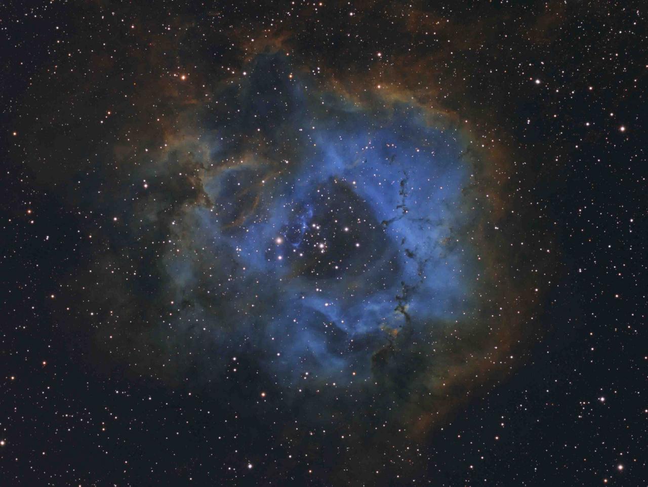 """Az ifjúsági díj nyertese: """"Csillagvirág"""". A kép technikai adatai: TMB92SS 92 mm apokromatikus távcső (f/5.5), Sky-Watcher NEQ-6 mechanika, QSI 583ws kamera, Ha-OIII-SII szűrők, 16 óra 15 perc összexpozíció."""