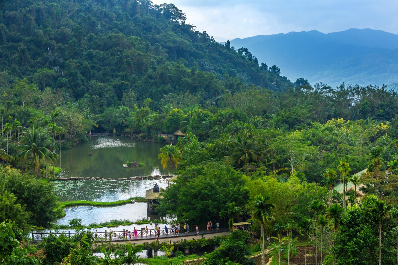 Yanoda esőerdő egész