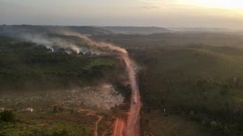Százmillió dolláros alapot hoznak létre Amazónia védelmére
