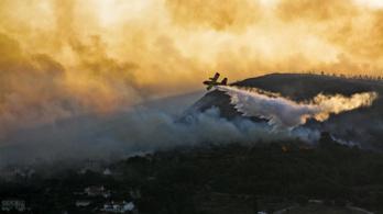 Egy nap alatt 80 új erdőtűz ütött ki Görögországban
