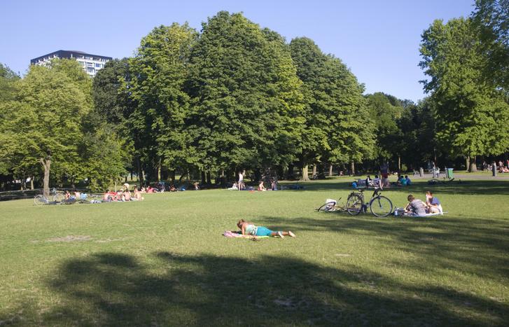 A Het Park Rotterdamban