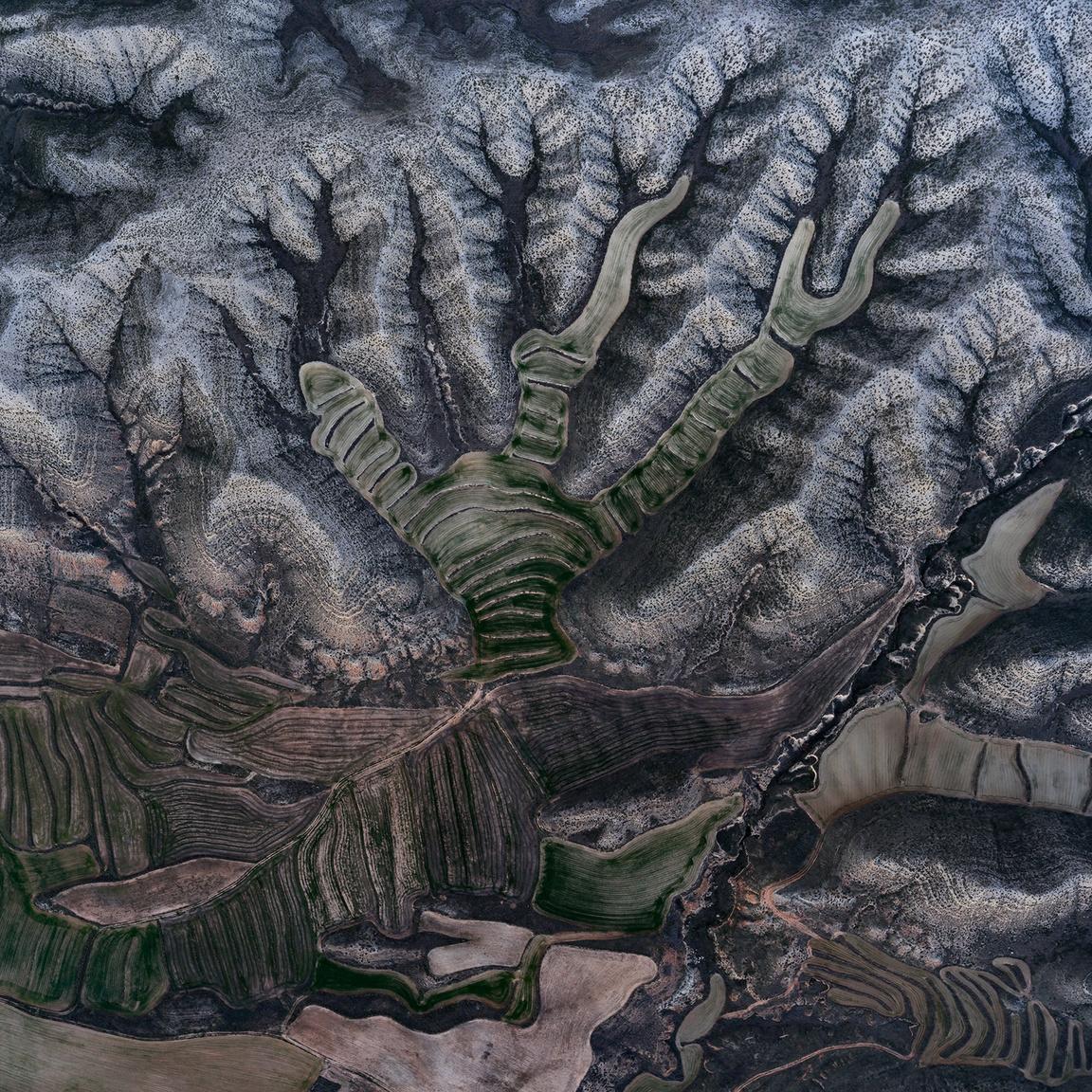 Barranco del TolloA száraz repedések és a búzamezők absztrakt mintái a dombos területet keresztül szelve felfedik, hol folyt egykoron a patak, és hol rakta le hordalékként a termő táptalaj alapjait.Botorrita, Zaragoza, Spanyolország. 2018.12.30.A képen látható terület szélessége: 790 m.