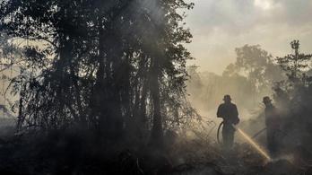 Négy hónapos csecsemő a szumátrai erdőtűz második áldozata