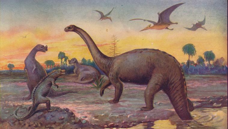 Ez utóbbiak közé tartoztak a dinoszauruszok, amelyek mintegy 65 millió évvel.