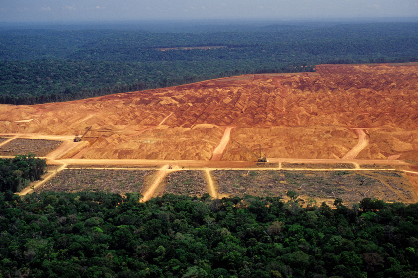 Nyugtalanító jelenséget figyeltek meg az Amazonas térségében - Most először vizsgáltak ilyesmit