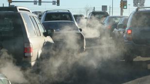 7 dolog, amit megtehetsz, hogy tisztább levegőt szívj nap mint nap