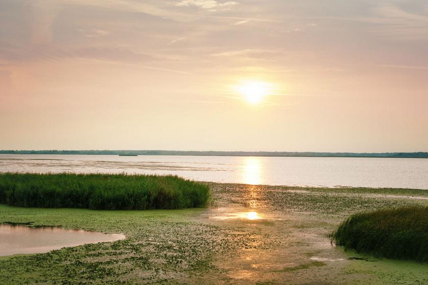 Ősszel álomszépen aranylik a Tisza-tó: ezt az arcát csak kevesen ismerhetik