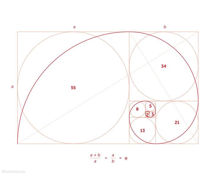 A Fibonacci-számok a matematikában az egyik legismertebb másodrendben rekurzív sorozat elemei. A nulladik eleme 0, az első eleme 1, a további elemeket az előző kettő összegeként kapjuk.