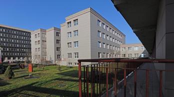 Annyi gyerek fertőződött meg szalmonellával Debrecenben, hogy megteltek a helyi kórházak