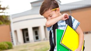 Minden második szülő küldi betegen is iskolába a gyereket