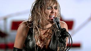 Letartóztattak egy férfit, akinek az életcélja Miley Cyrus megtermékenyítése