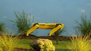 Most már tényleg meg lehet rendelni a világ legügyesebb robotkutyáját