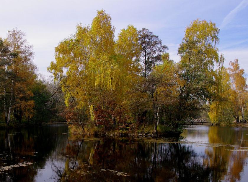 őszi folyó fogyás)