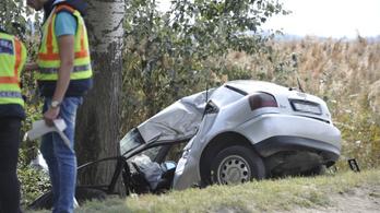 Fának csapódott egy autó Dabasnál, meghalt a 25 éves sofőr