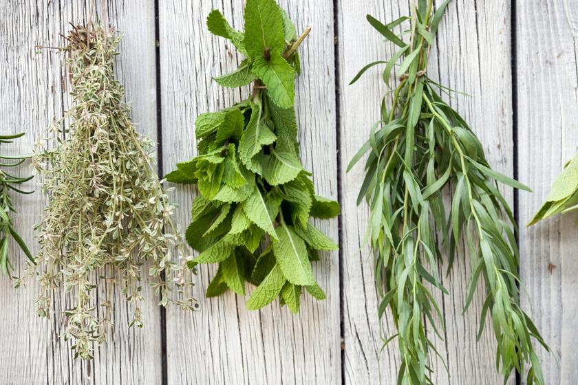 Hogyan tároljuk a zöldfűszert, hogy tovább maradjon friss? 4 praktikát mutatunk