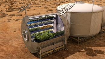 Lassan magunknak termelhetünk majd ételt a Marson