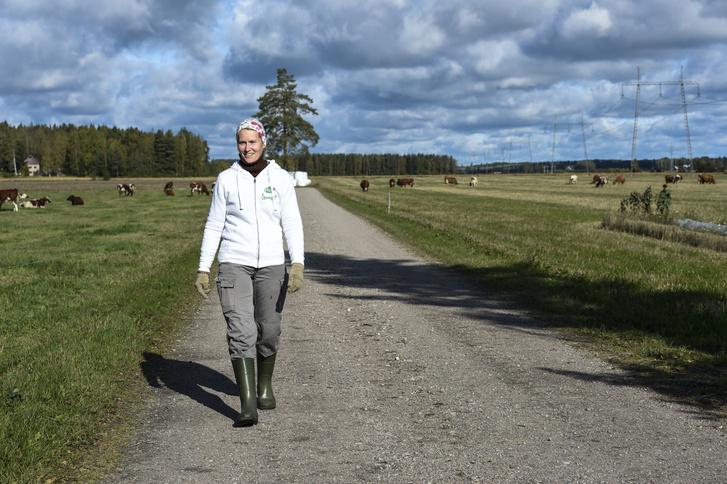 Aino Wathén, a Helsinkitől északra lévő családi tehenészet gazdája