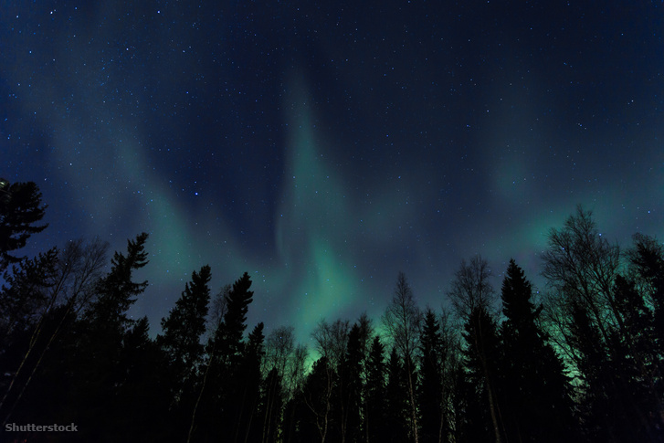 Karl Lemström azt vette észre, hogy Lappföldön, ahol sok az északi fény, viszont általában elég cudar az idő, a fák mégis jól megélnek