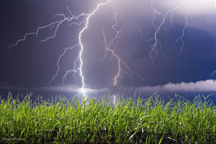 Liu Binjiang agronómus - saját visszaemlékezése szerint - arra lett figyelmes, hogy a villámcsapások befolyásolják a talajok tápanyagtartalmát