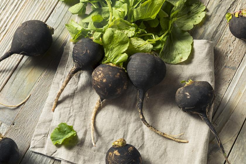 A fekete retek a szezon legolcsóbb és legegészségesebb zöldsége, ami felveszi a harcot a megfázás és a rekedtség ellen. Sok B- és C-vitamint tartalmaz, amely az immunrendszer erősítésében játszik fontos szerepet. A felvágott retek belsejébe mézet is önthetsz, ezzel igazi vitaminbombát rittyenthetsz magadnak.