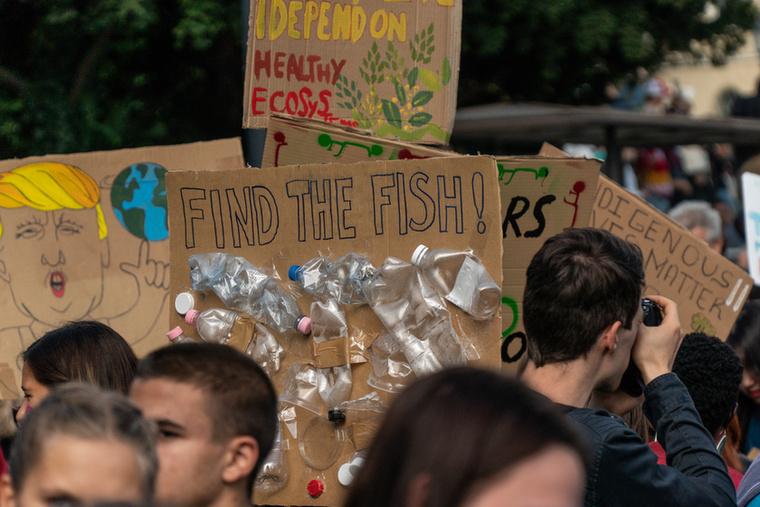 Találd meg a halakat!