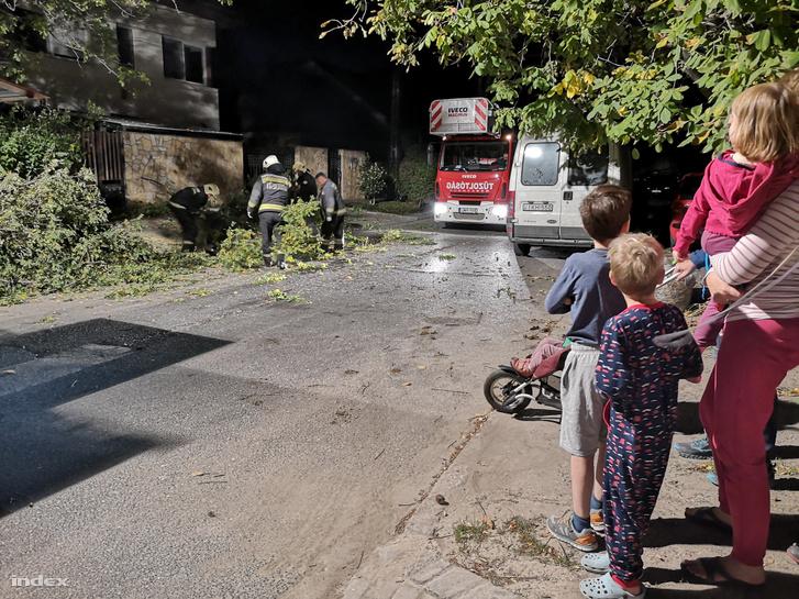 A viharos szélben kidőlt fát távolítanak el tűzoltók Budapesten a Vízakna utcában