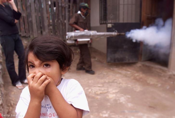 Archív fotó egy 2002-es hondurasi szúnyogirtó kampányról, amivel a vérzéses dengue-láz terjedése ellen küzdöttek a hatóságok