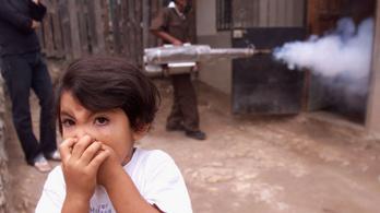 Hondurasban már 144 ember halt bele a dengue-lázba