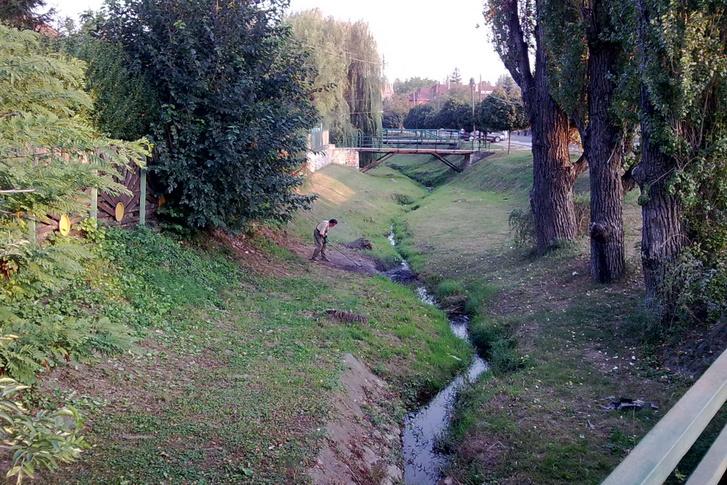 A patakmeder kotrását megelőző állapot a Dera-patak pomázi szakaszán