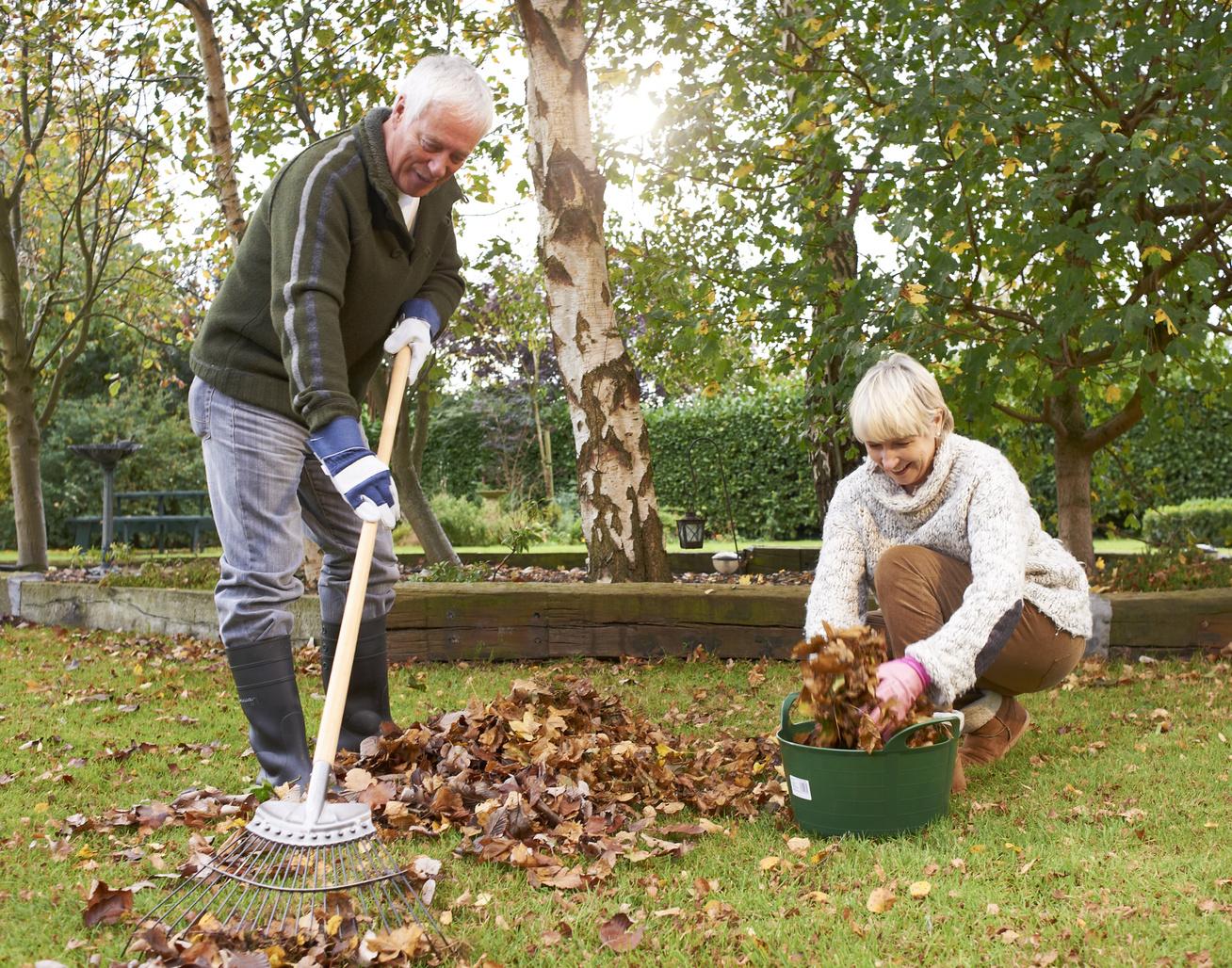 Őszi feladatok a kertben